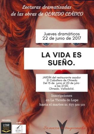 cartel La vida es sueño 2017